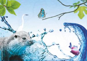 A Nossa Biodiversidade - Desafio Biodiversity4all 2016