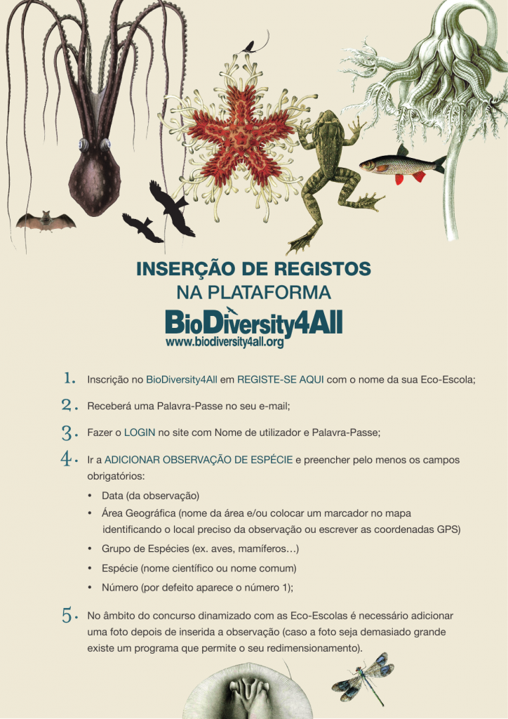 InsercaoRegistosPlataforma_Biodiversity4All